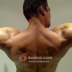 Salman-Khan-Bodybuilding-Pictures-Salman-Khan-Body