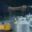 Chotu Chaiwala of Mumbai  The online chai store of Mumbai. Chai right from the street peddlers to your office desk. When you can't have a chai break, the chai […]